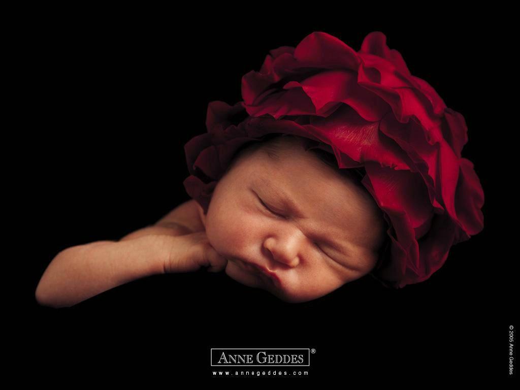 Anne Geddes- bébé fleur